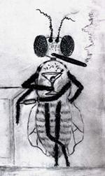 Cartoon of fly addict