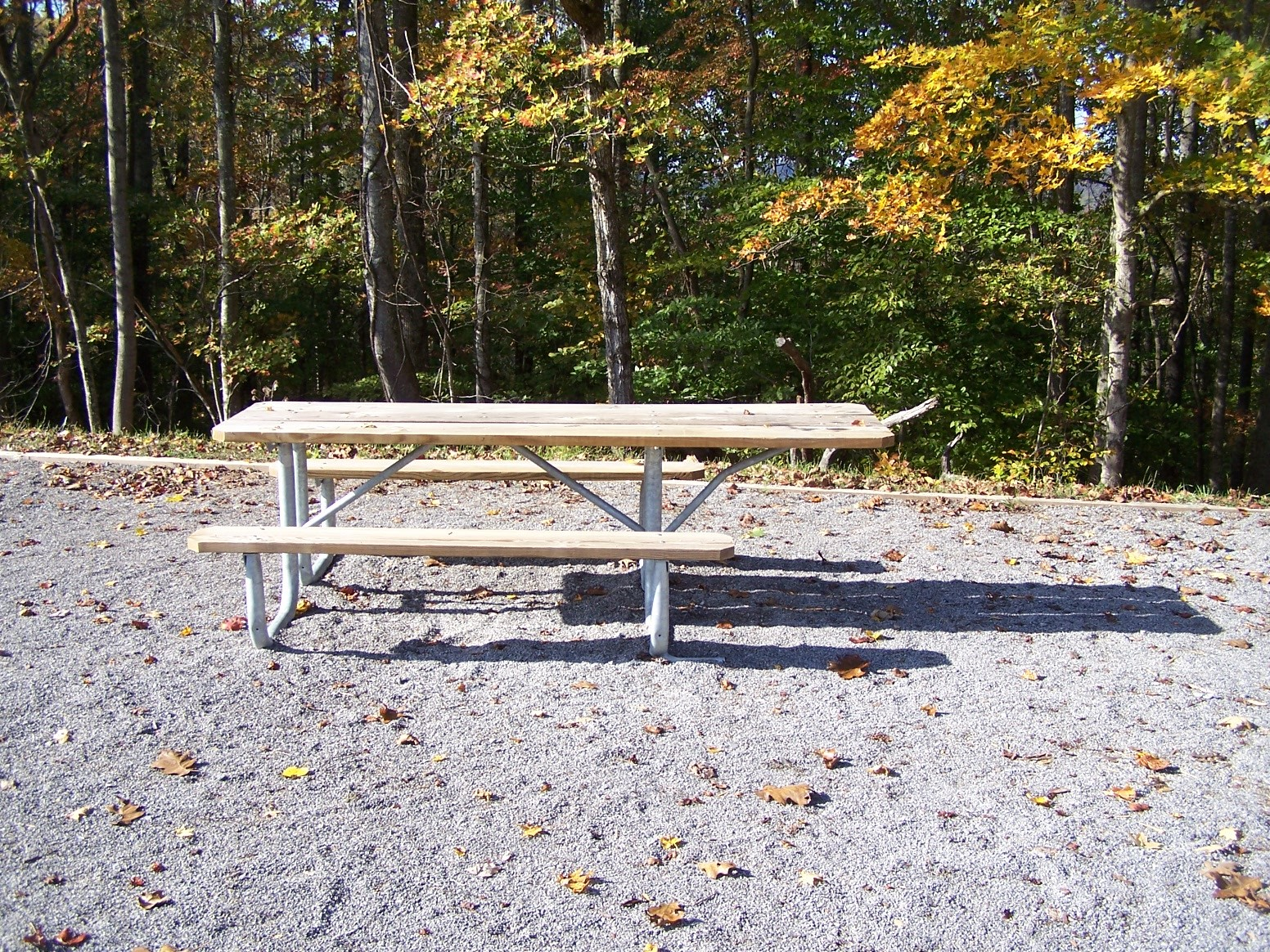Universally Designed Picnic Bench