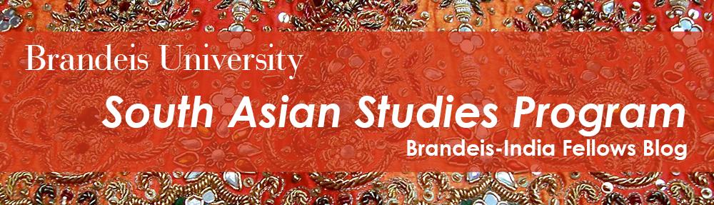 Brandeis-India Fellows Blog