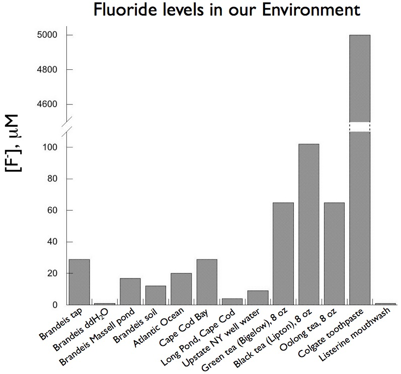 Fluoride levels in our environment (graph).001