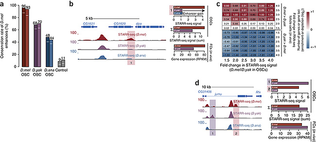 nature_genetic_fig6