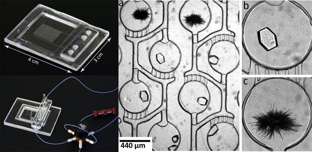themoplastic microfluidics figure