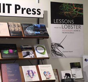 Lessons from Lobster. Photo courtesy of MIT.