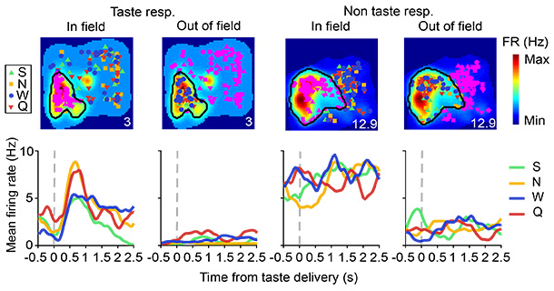 Analyzing how place cells responded to tastes delivered inside or outside of their place field