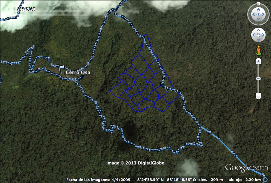 "A map of the rainforest patch  I am working with that I made using the GIS program I learned. I live in ""Cerro Osa"", ~800m along the blue trail from the plantation."