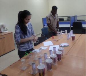Here we are setting up an experiment to test the effectiveness of two different insecticides