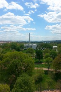 A sunny view of the Washington Monument standing tall behind the White House.