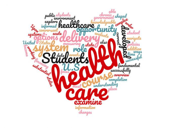 Healthcare Delivery System Description Word Cloud