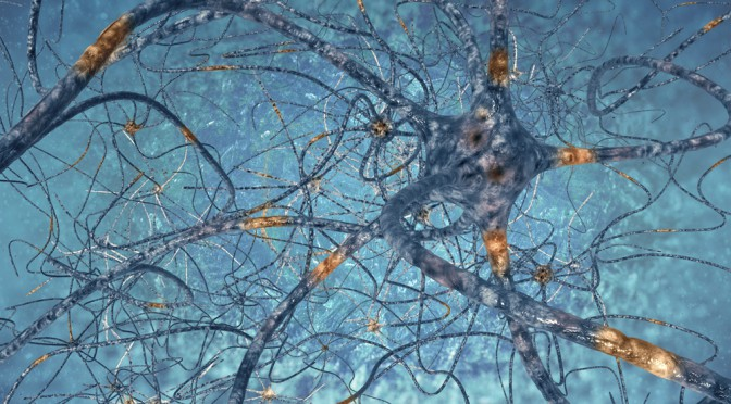 Researchers identify potential cause of schizophrenic symptoms